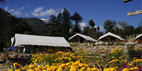 Camping Packages for Kinnaur Spiti Valley